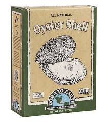 Image result for oyster shell dte